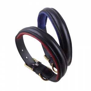 ESB Black raised leather dog collars with red and royal blue padded linings