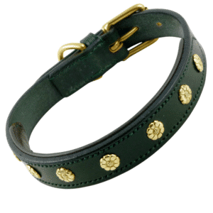 ESB Leather Daisy dog collar in Green with brown padded lining