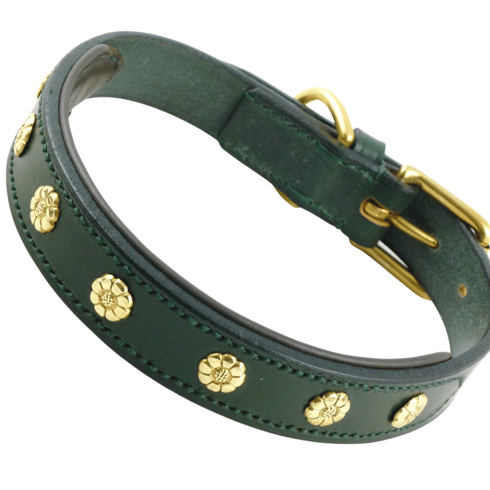 Green bridle leather